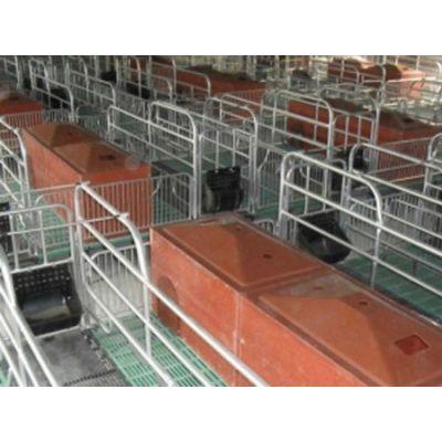 青海限位栏「旺农畜牧设备」母猪限位栏费用