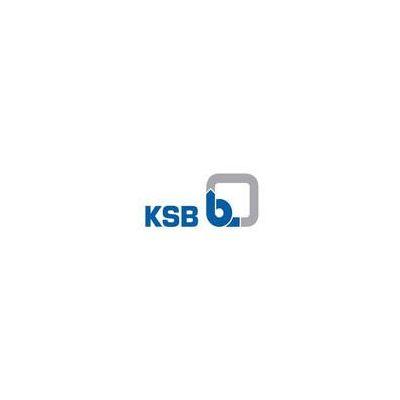 Y型进口过滤器 德国凯士比KSB过滤器